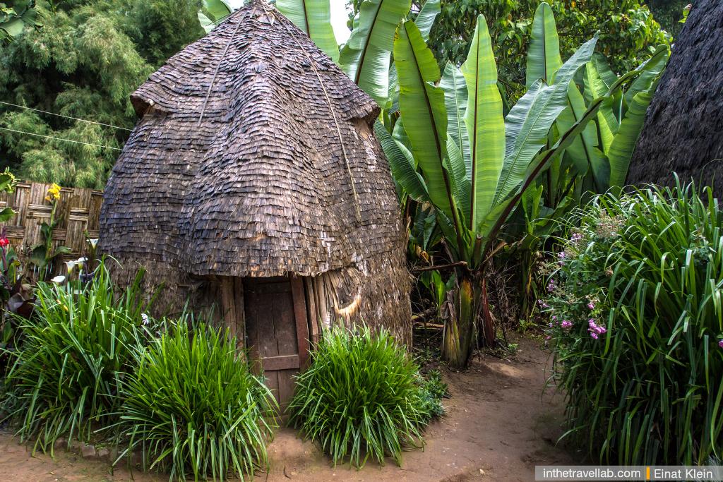 Dorze tribe